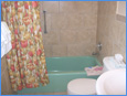 Columbine Motel Bathroom with soaking tub and shower
